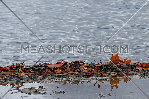 Autumn leaves on a pebble beach reflected in water