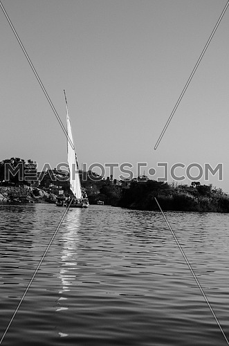 Long Shot for a Sailboat in the River Nile and a green trees in the background at day Black and White - Aswan - Egypt
