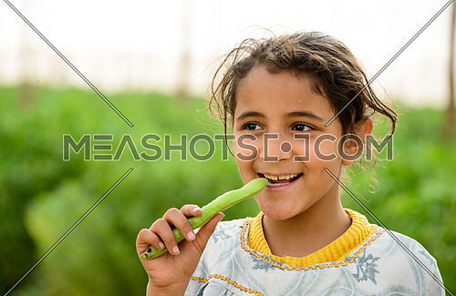 A girl eating raw broad beans in a farm