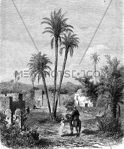 El-Maya Little Water, oasis located three days west of El Aghouat, vintage engraved illustration. Magasin Pittoresque 1857.