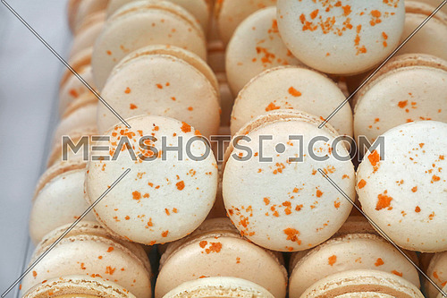 Fresh baked white and beige macaroon pastry cookies (macarons, macaroni) in retail store display, close up, low angle view