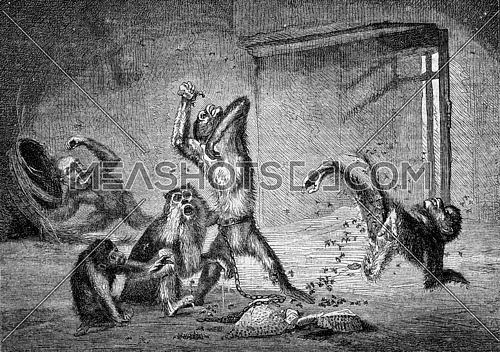 1872 Exhibition of Painting, Might is right, for A E, Mery, vintage engraved illustration. Magasin Pittoresque 1873.