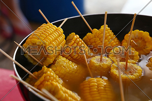 Closeup ready to eat boiled or steamed sweet corn cobs on stick in a big cooking pan, high angle view