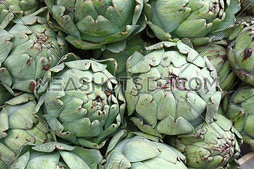 Green fresh globe artichokes on retail market display
