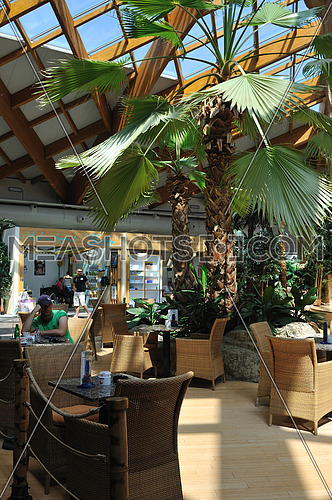 beautiful caffe restaurant with palm tree and little waterfall and bridge