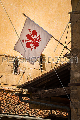 In the picture the flag of Florence, with the middle of it the symbol of the city of Florence \