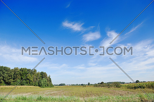 countrysice nature landscape with blue sky and green meadow