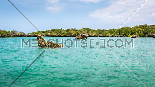 Seascape with background mangrove trees and tourist boat on the tropical coast of Zanzibar island.
