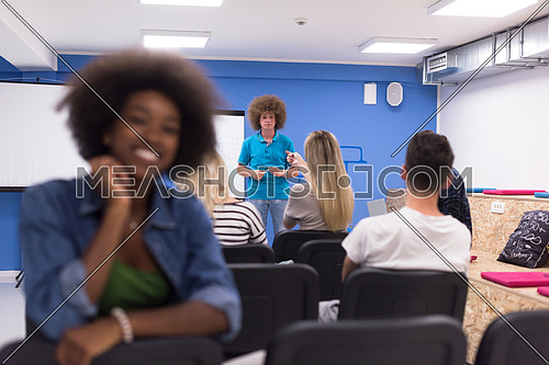 portrait of young African American business woman at modern startup office interior, team in meeting in background