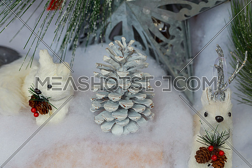 Pine cones on Christmas decorations background plant, beautiful, nature,
