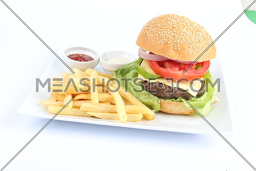 a photo for hamburger meal including sandwich , french fries tomato and cheese