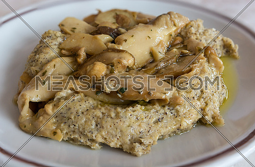 in the picture typical italian food ,Polenta Taragna and mushrooms (Porcini) on white dish at restaurant.