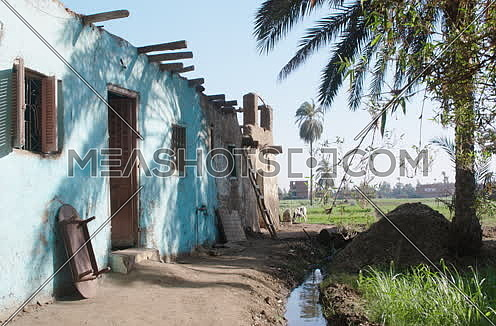 long shot of countryside house beside green field in egypt