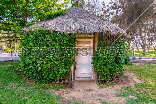 Wooden hut with closed wooden white grunge door surrounded by dense green plants at Montaza public park, Alexandria, Egypt