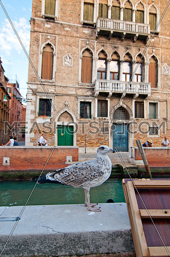 unusual pittoresque view of Venice Italy most touristic place in the world