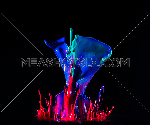 paint explosion color photography