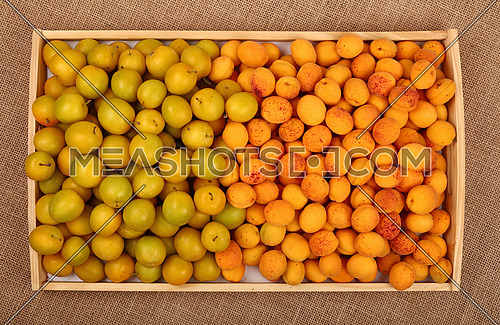 Wooden tray full of fresh mellow yellow plums (cherry plums) and ripe apricots on burlap canvas background top view