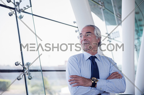 portrait of handsome senior business man at modern office conference meeting room interior