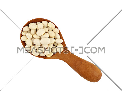 White frigole kidney beans in wooden scoop isolated on white background, close up, elevated top view