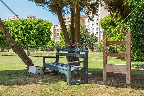 Green empty wooden bench in shadow of tree in urban park on sunny summer day