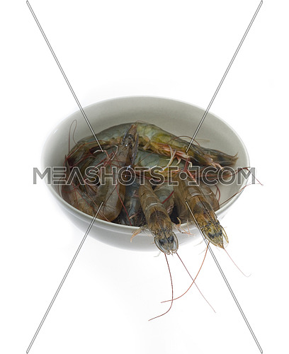 raw fresh alive shrimps on a bowl over white background