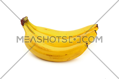 Bunch of three fresh yellow bananas isolated on white background, close up, low angle side view
