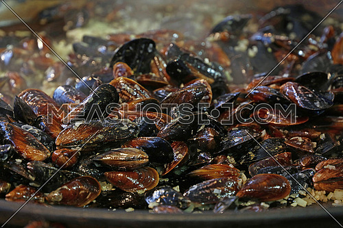 Cooking steamed and roasted mussels with oil, onion and garlic at big frying pan, close up, low angle view