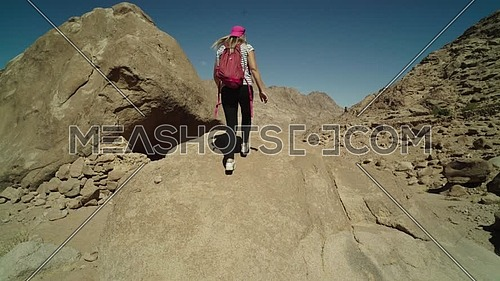 Track In shot for a female tourist wearing a pink cap and travel backpack climbing a big rock to explore Sinai Mountain for wadi Freij at day.