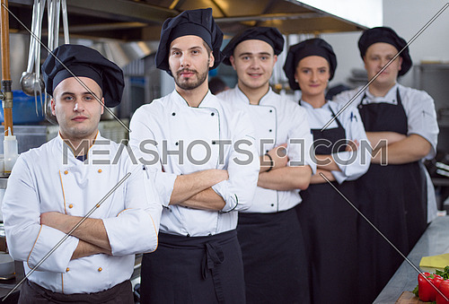 Portrait of group chefs standing together in commercial kitchen at restaurant