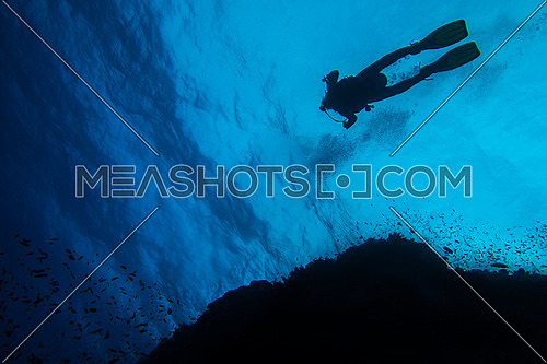 A low angle show showing a diver in deep waters