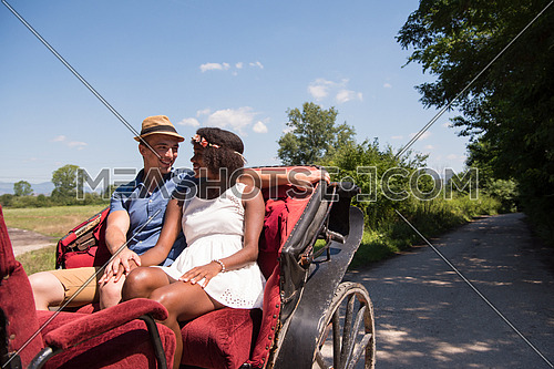 a young man and a beautiful African American girl enjoying horse carriage rides in nature on a sunny summer day