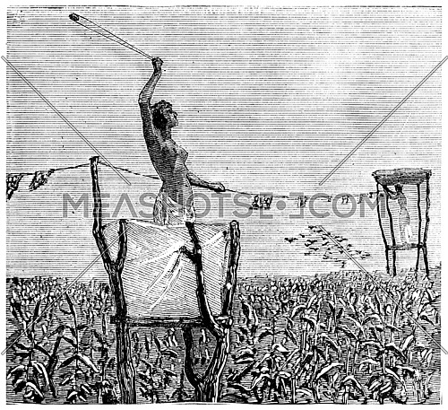Young girl protecting crops, vintage engraved illustration. Journal des Voyage, Travel Journal, (1880-81).