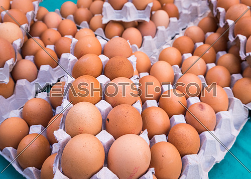 Brown chicken eggs placed in cardboard boxes at the market,outdoor.