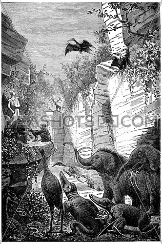 The trumpet of the judgment of science rings, vintage engraved illustration. Earth before man – 1886.