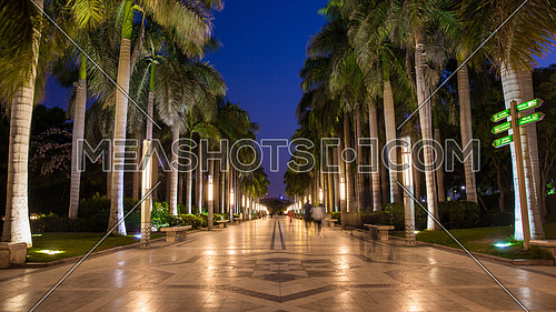 Al Azhar Park at Night