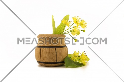 Small wooden pot of freshly picked yellow linden flowers and leaves, also called tilia and lime over a white background