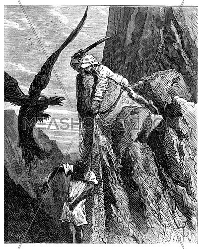 Two thousand miles across South America. He swiped the condor, vintage engraved illustration. Journal des Voyage, Travel Journal, (1880-81).