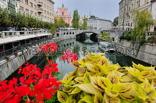 city  Ljubljana, capital of Slovenia with old bridge flower and river