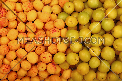 Fresh mellow yellow plums (cherry plums) and ripe apricots background pattern close up, top view
