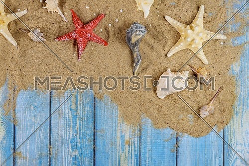 Many different star fish and shells on the sand beach on a blue wooden background