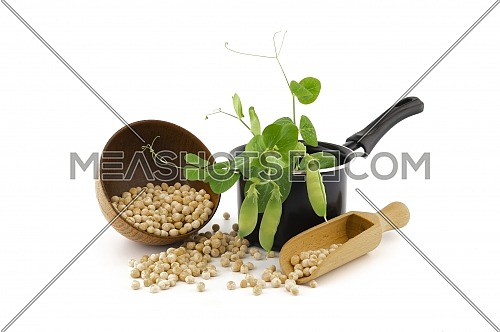 Dried chickpeas spilling from a bowl and wooden scoop with a fresh green plant and pods in a pot over white