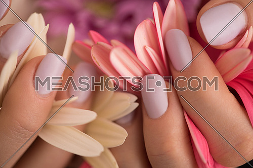 beauty delicate woman hands with manicure holding flower close up