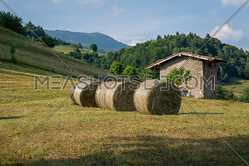 hay bale harvested in the mountain, fodder balls ready for winter time.