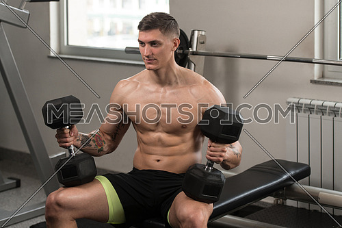 Fitness Man Preparing To Working Out Shoulders In Fitness Center - Dumbbell Concentration Curls