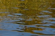 Colorful yellow and blue ripples and waves fast running on water surface, moving flow background, Full HD 1080