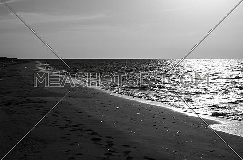 black and white frame of the beach while magical sun set