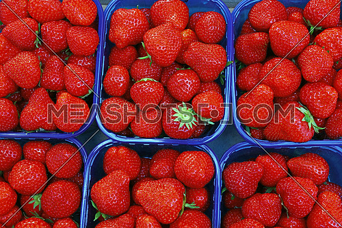 Close up fresh red ripe strawberry berries in plastic container boxes on retail display of farmers market, high angle view