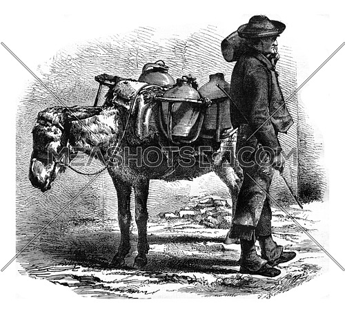 A water bearer in Cordoba, vintage engraved illustration. Magasin Pittoresque 1877.