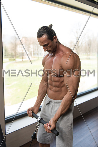 Muscular Mature Man Bodybuilder Doing Heavy Weight Exercise For Biceps