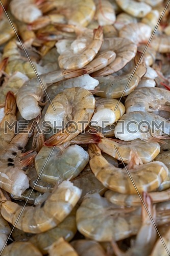 frozen tropical shrimp at the seafood market